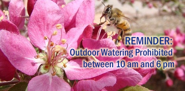 City Outdoor Water Restrictions Begin May 1